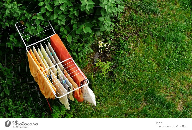 Summer Yellow Meadow Window Above Garden Orange Tall Fresh Lawn Dry Hang Washing Laundry Dry Household