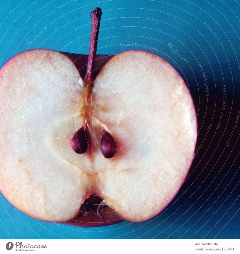 Blue Mountain Healthy Fruit Nutrition Apple Division Organic produce Fairy tale Half Seed Vitamin Poison Chemistry Cyan Dwarf