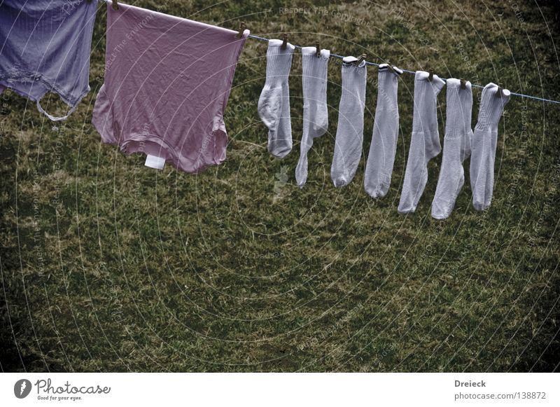 White Clothing T-shirt Clean Pure Stockings Laundry Washer Clothesline Clothes peg Laundered Tumble dryer