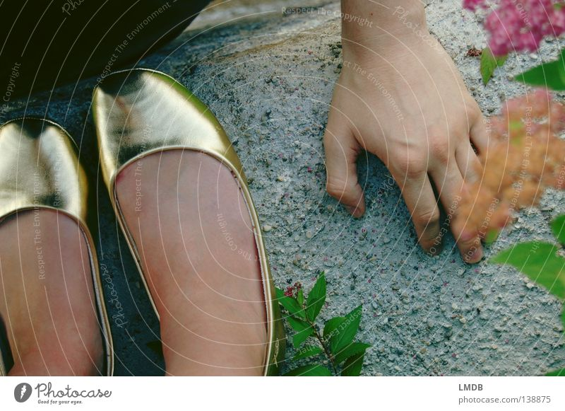 Woman Man Hand Wall (barrier) Couple Feet Footwear Gold In pairs Exceptional Perspective Past Castle Luxury Fairy tale