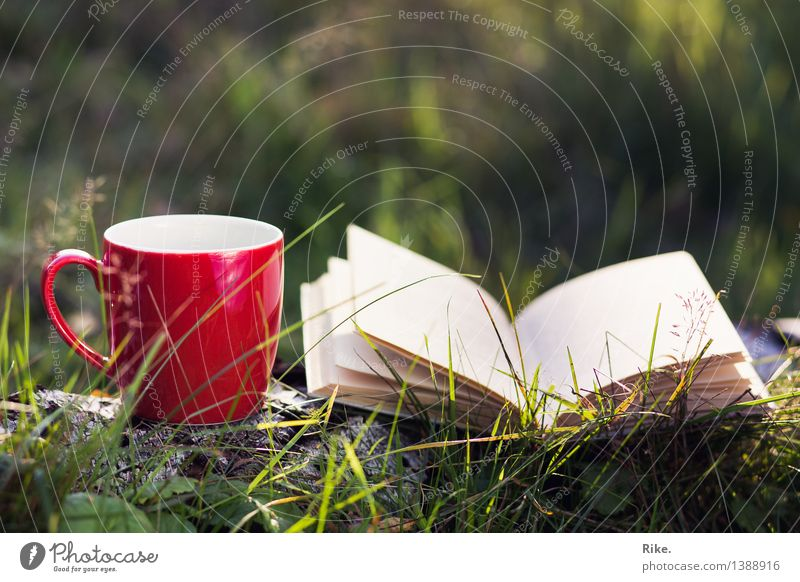 take your time. Beverage Drinking Hot drink Coffee Tea Cup Leisure and hobbies Reading Vacation & Travel Trip Summer Culture Environment Nature Autumn
