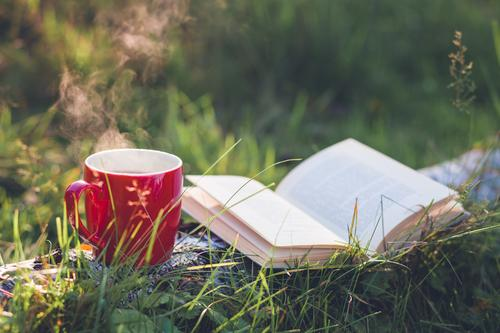 Time-out. Beverage Drinking Hot drink Tea Cup Healthy Healthy Eating Well-being Relaxation Calm Nature Autumn Beautiful weather Plant Tree Grass Garden Forest