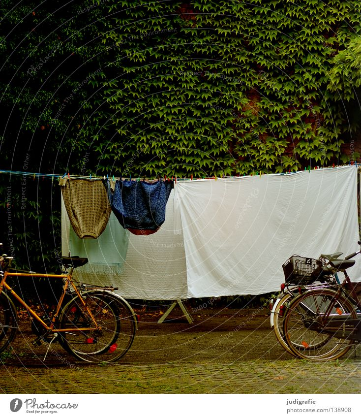 washing day Laundry Clothesline Bicycle Backyard Sheet Jacket Washing day Clean Summer Dry Colour Clothing Living or residing To hold on Farm