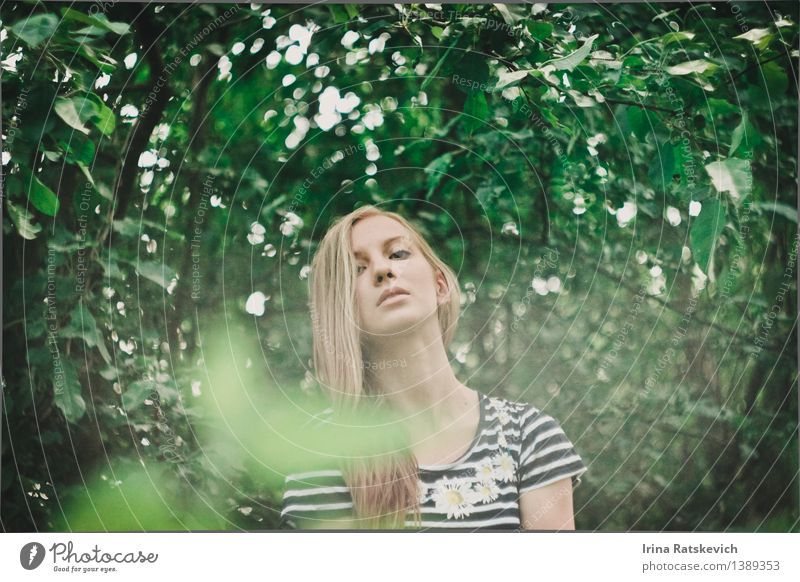 spring in the forest Human being Nature Youth (Young adults) Plant Green Beautiful Young woman Tree Eroticism Landscape Leaf 18 - 30 years Forest Face Adults Spring