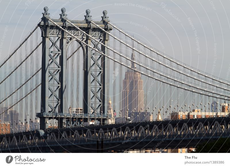 No sleep to Brooklyn Lifestyle Vacation & Travel Tourism Adventure Far-off places City trip Night life Business New York City Manhattan Manhattan Bridge