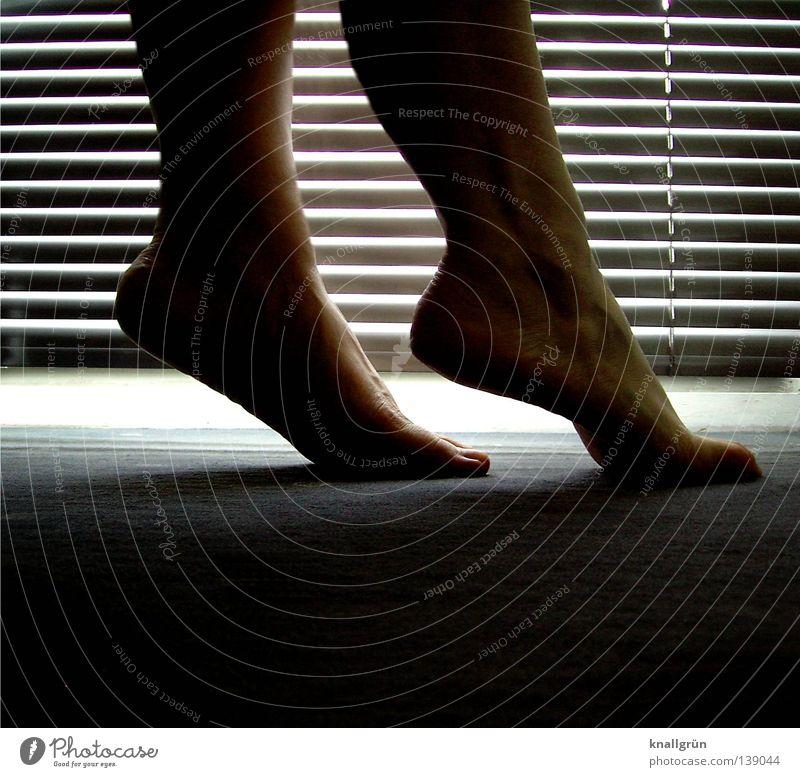 blue hour Legs Feet Tip of the toe Floor covering Carpet Dim Shadow Twilight Venetian blinds Dark Bright Slat blinds Shaft of light Feminine Woman Promising