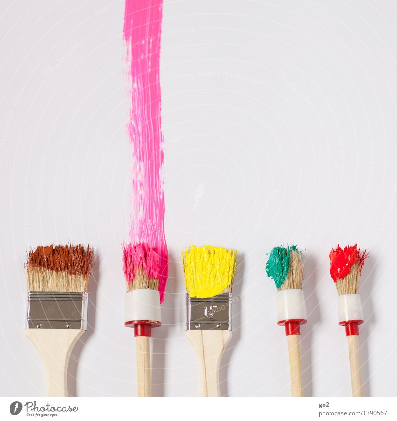 PINk Leisure and hobbies Redecorate Moving (to change residence) Work and employment Craftsperson Painter Art Artist Paintbrush Dye Brush stroke Brush handle