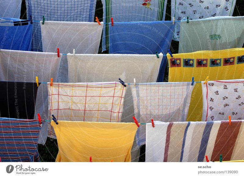 All clear! Laundry Clothesline Dry Clothes peg Towel Clean Pure Fragrant Fresh Yellow White Stripe Neighbor Clothing Rope wash Drying drying area To hold on