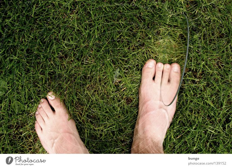 extra ordinary Meadow Grass Toes Toenail Vessel Strange Excess Handicapped Crippled Hideous Disgust Mirror Mirror image Reflection Malformation Man Feet Lawn