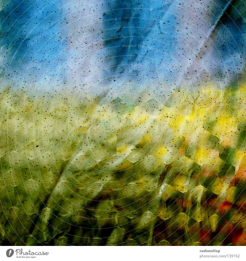 awning vista Window Abstract Bathroom Yellow Camping Pattern Furrow Wrinkles Summer awned plastic Blue shower Music festival Trip Detail corn Rain field poppy