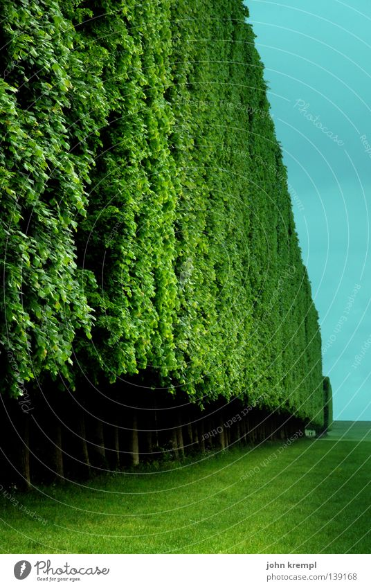 Sky Tree Green Blue Leaf Clouds Wall (building) Grass Garden Wall (barrier) Park Bushes Paris Monument France Turquoise