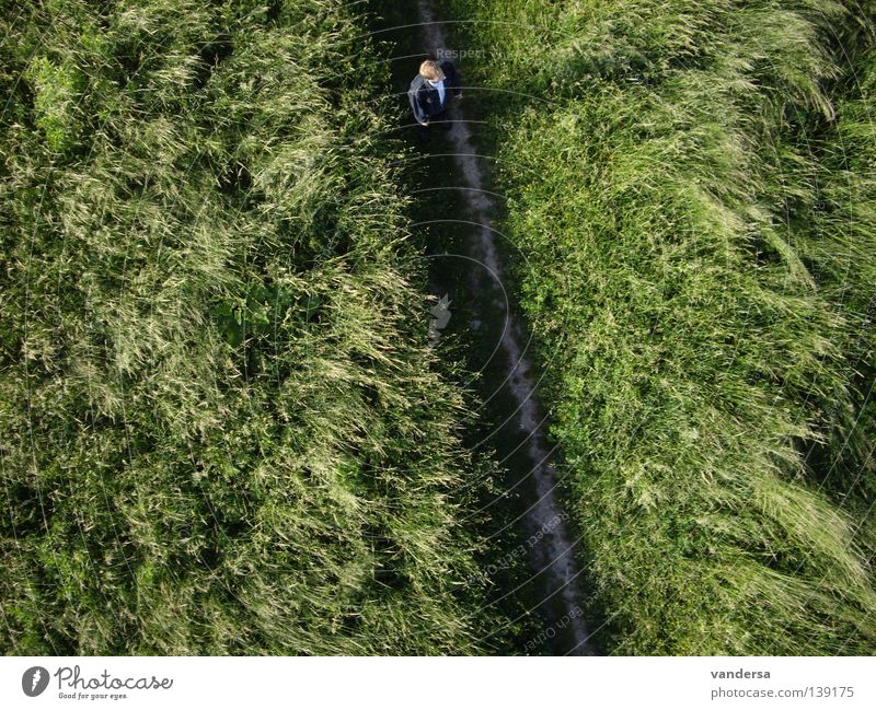 The Other View of Things - Bird's Eye View Meadow Green Man Human being Aerial photograph Dresden aerial photo