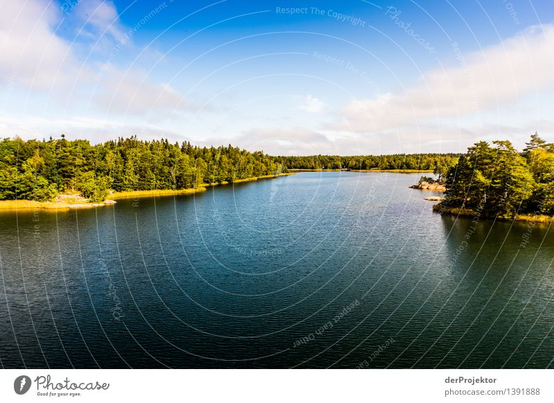 Summer in the archipelago near Stockholm Vacation & Travel Tourism Adventure Far-off places Freedom Summer vacation Sunbathing Environment Nature Landscape