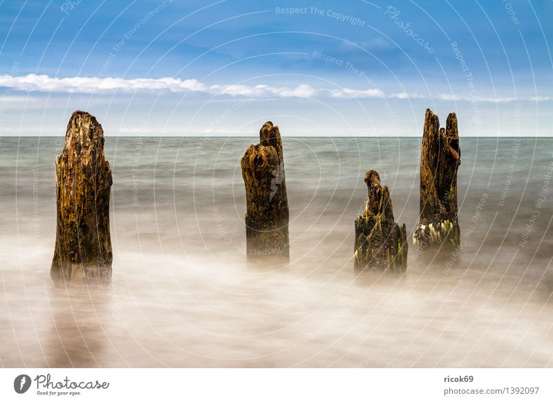 Stage at the Baltic Sea coast Relaxation Vacation & Travel Beach Ocean Waves Landscape Water Coast Wood Blue Romance Idyll Nature Tourism groynes