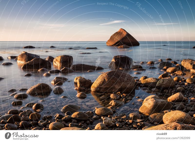 Swan stone at the Baltic Sea coast Relaxation Vacation & Travel Nature Landscape Rock Coast Ocean Stone Blue Romance Idyll Tourism Sunset Baltic coast