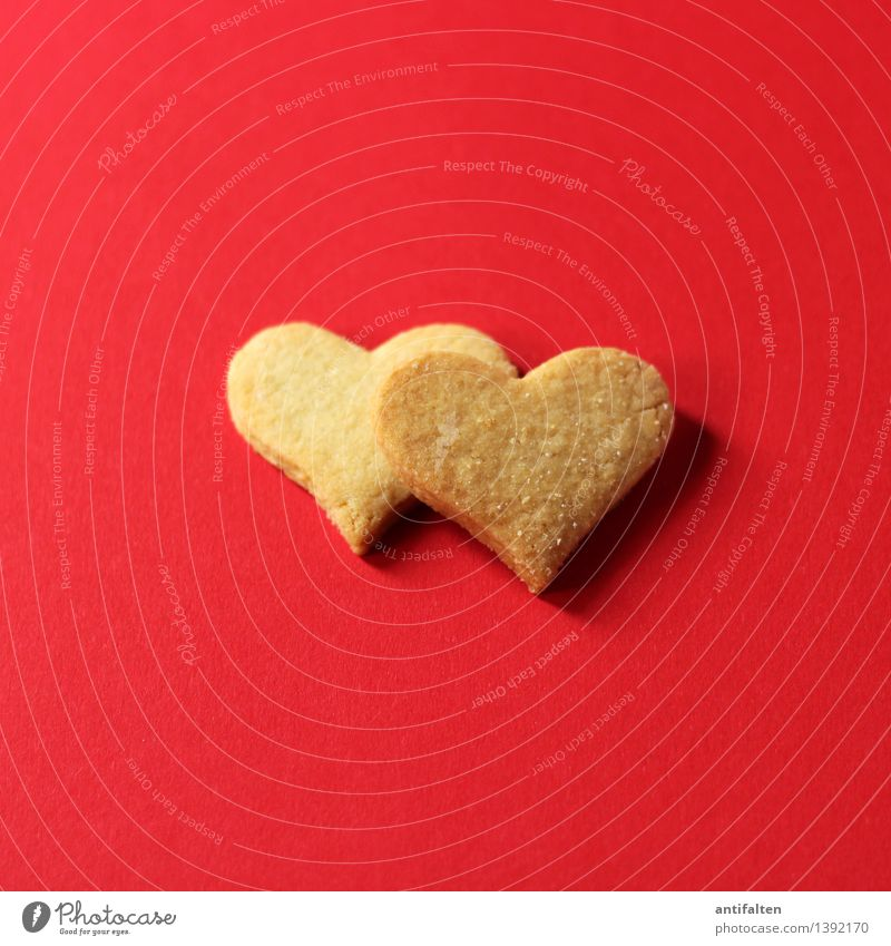 Christmas & Advent Red Love Emotions Eating Happy Food Friendship Leisure and hobbies Happiness Nutrition Heart Cooking & Baking Joie de vivre (Vitality) Sweet Romance