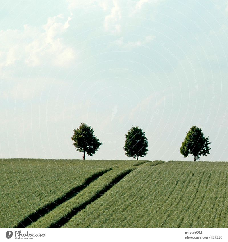Nature Blue White Beautiful Tree Plant Clouds Calm Landscape Freedom Warmth Moody Line Germany Field Arrangement