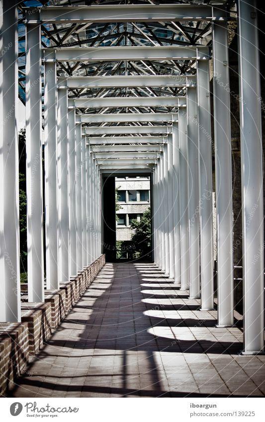 English Garden Munich The Englischer Garten Light Tunnel Shadow Stone Wall (barrier) Corridor Architecture