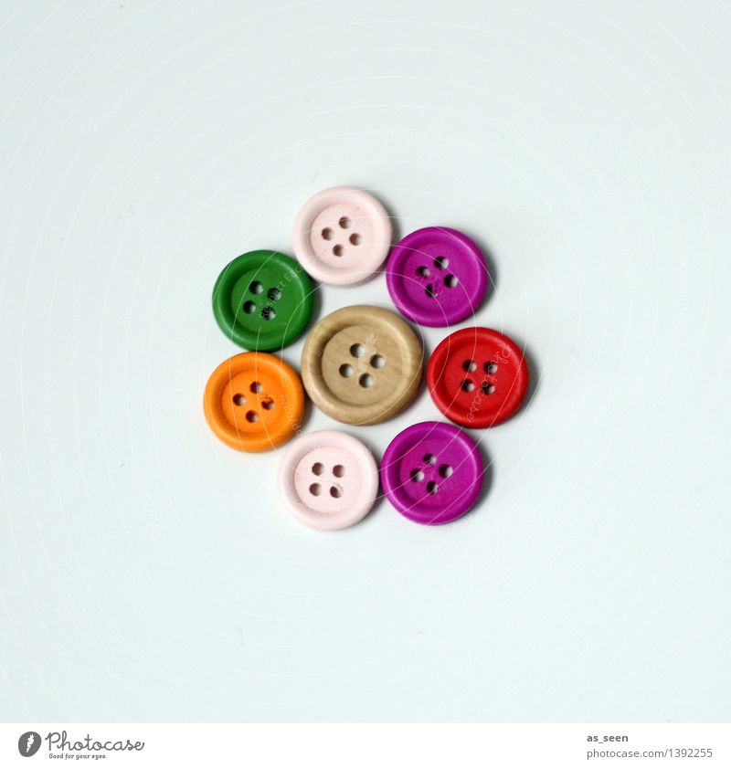 Small group Leisure and hobbies Handicraft Handcrafts Living or residing Fashion Accessory Decoration Collection Buttons Dry goods Plastic Lie Friendliness