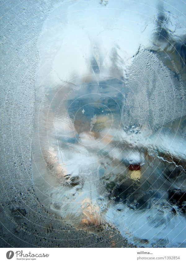 View through an icy window in winter Winter Ice Frost Cold Blue Frozen Window pane blurriness Light blue Colour photo Exterior shot Deserted