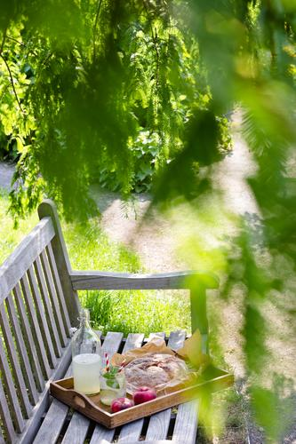 Green Summer Tree Relaxation Spring Grass Lanes & trails Garden Food Fruit Park Modern Glass Nutrition To enjoy Beautiful weather