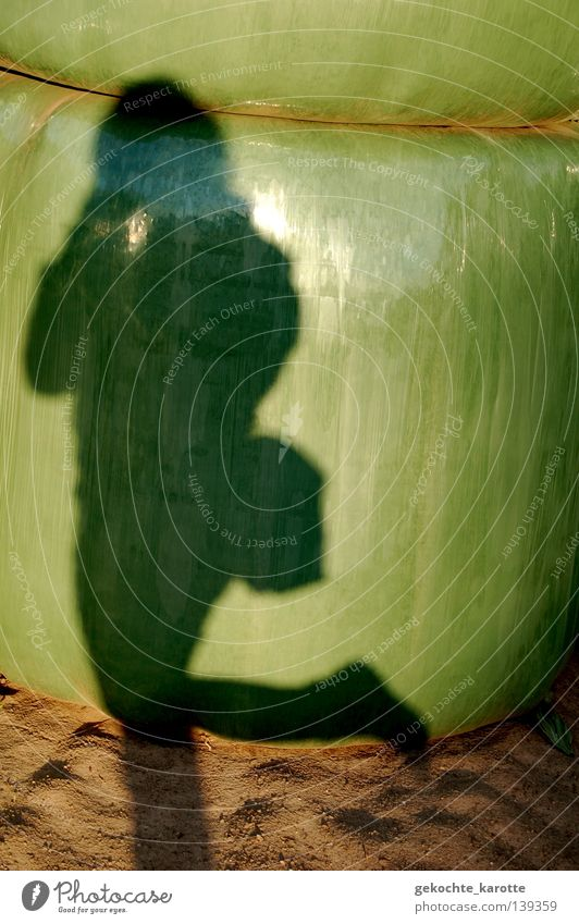 green stuff Packaged Glittering Agriculture Hay bale Shadow play Green Packing film Mainstay Salto Unwavering Monument Exterior shot Landmark Summer Human being