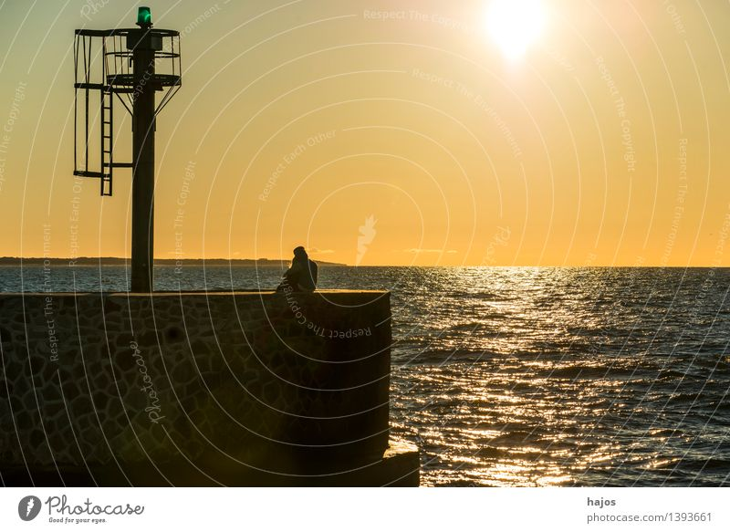 Sunset at the Baltic Sea Leisure and hobbies Vacation & Travel Ocean Flirt Sunrise Moody Happy Spring fever Love Romance Idyll Love affair Mole Signal