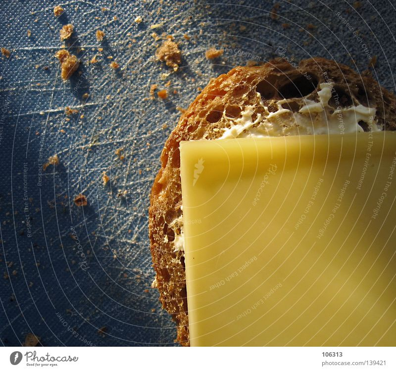 PHOTKÄS' Cheese Cheese sandwich Pallid Yellow Nutrition Bread Roll Breakfast Wholewheat Chopping board Blue Brown Dairy Products Crumbs Crumbled Part Meal Light