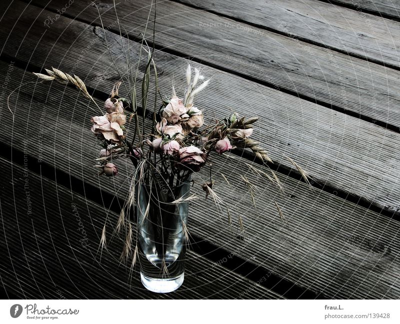 Dried Rose Grass Death Wood Balcony Grappa Dry Delicate Decoration Glass