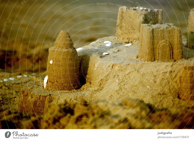 summer Sandcastle Beach Mussel Coast Vacation & Travel Playing Physics House (Residential Structure) Water ditch Colour Baltic Sea North Sea Relaxation Build