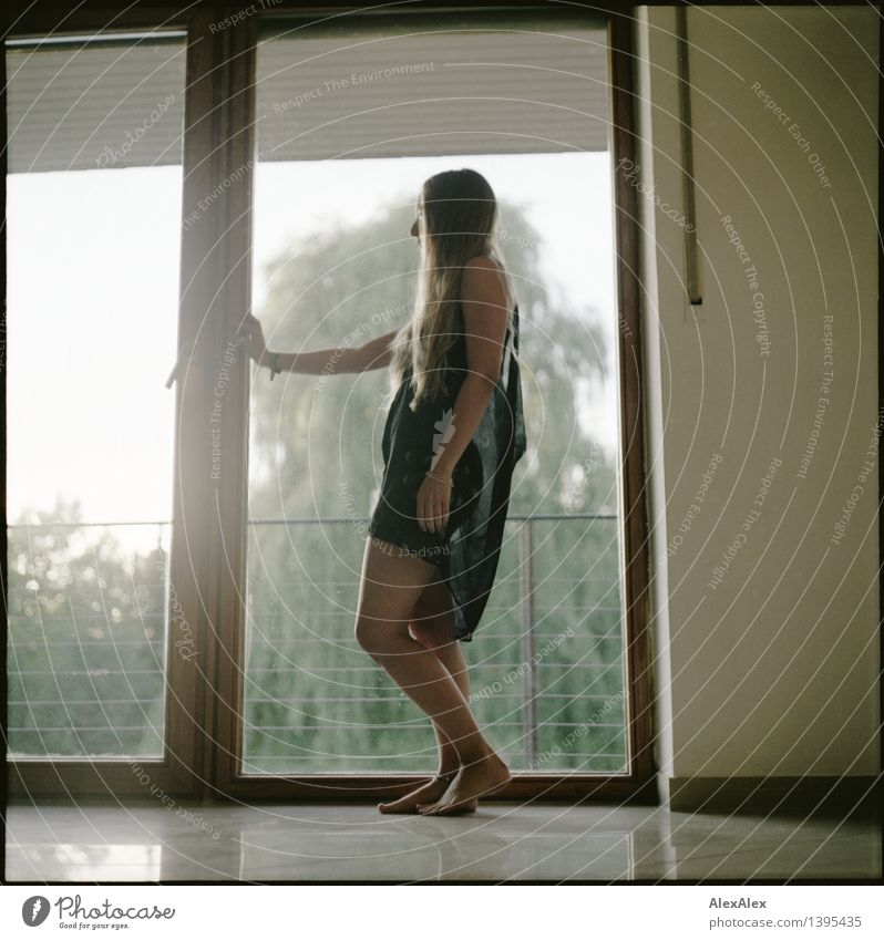 excerpt of the day Beautiful Room Young woman Youth (Young adults) Legs Feet 18 - 30 years Adults Tree Window Back-light Dress Barefoot Blonde Long-haired