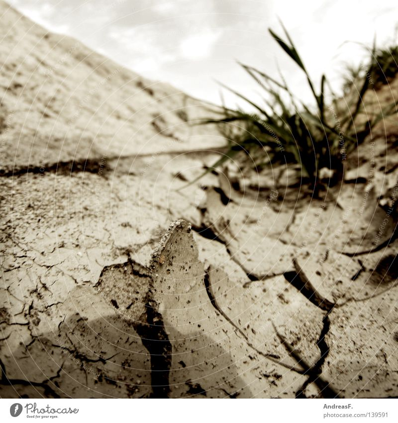 Summer Warmth Sand Earth Floor covering Physics Hot Dry Crack & Rip & Tear Real estate Cast Drought Dried Erosion Burst Irrigation
