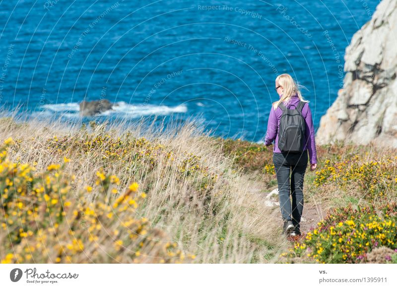 Breton in the making Vacation & Travel Freedom Summer Ocean Hiking Feminine Woman Adults 30 - 45 years Landscape Water Grass Bushes Mountain heather Heathland