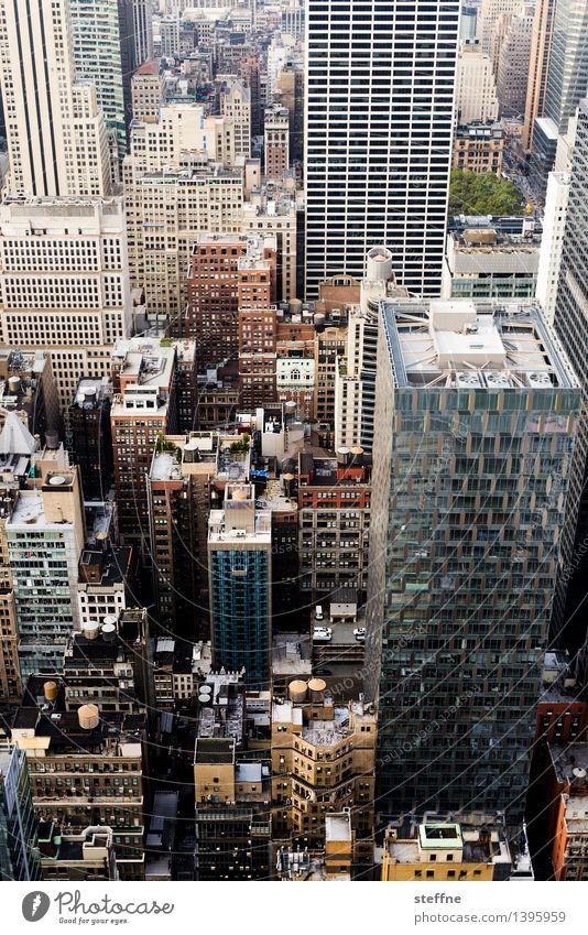 City Freedom City life High-rise Esthetic USA Skyline Americas Manhattan New York City