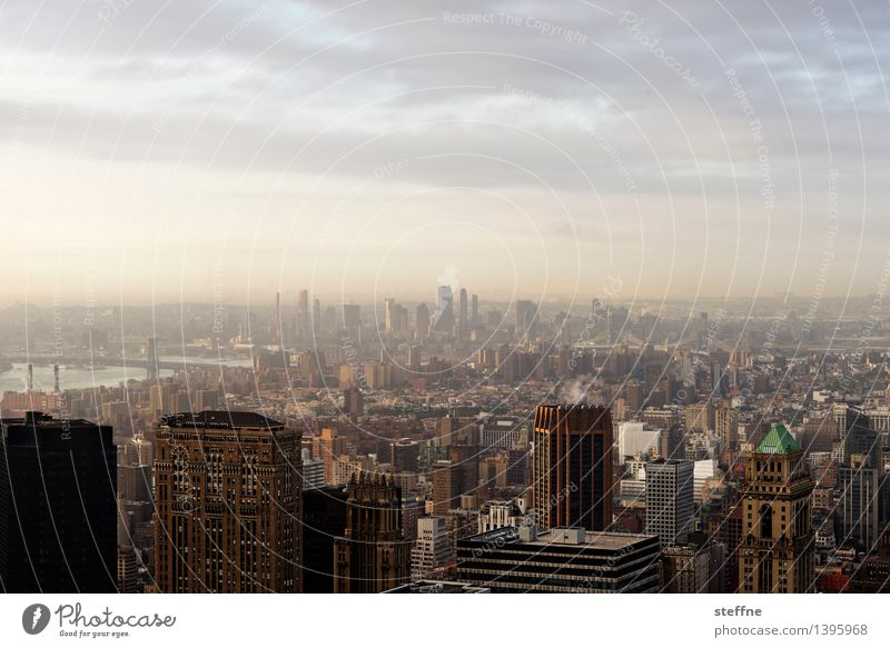 City Freedom City life High-rise Esthetic USA Skyline Americas Manhattan New York City Brooklyn