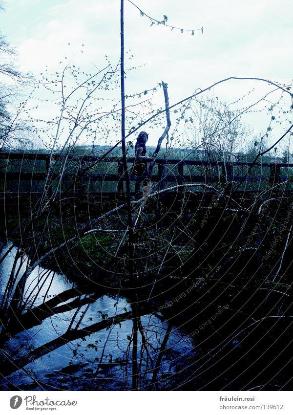 death bridge Dark Brook Woman Fear Caution Lie (Untruth) Dangerous Grief Distress Bridge Branch Water River Sky Going Walking Wait Looking unsuspecting Threat