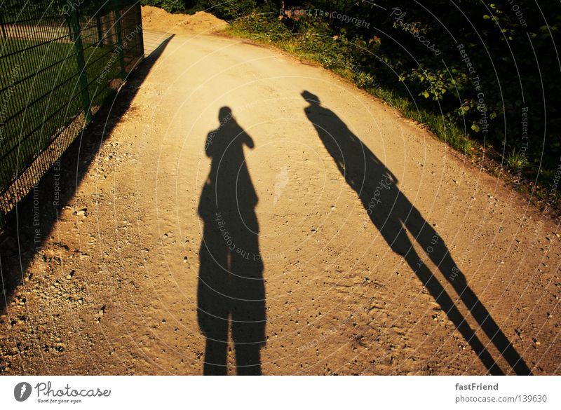 Sun Summer Dark Small Lanes & trails Couple Friendship Together Hiking Large In pairs Perspective To go for a walk Thin Long Fence
