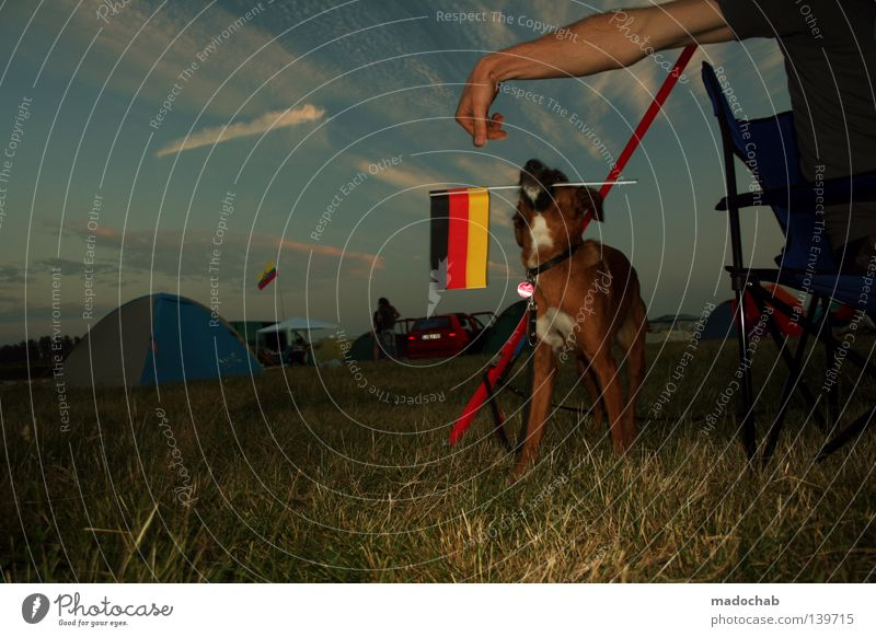 Sky Hand Dog Vacation & Travel Joy Animal Relaxation Meadow Emotions Grass Happy Moody Funny Germany Arm Sit