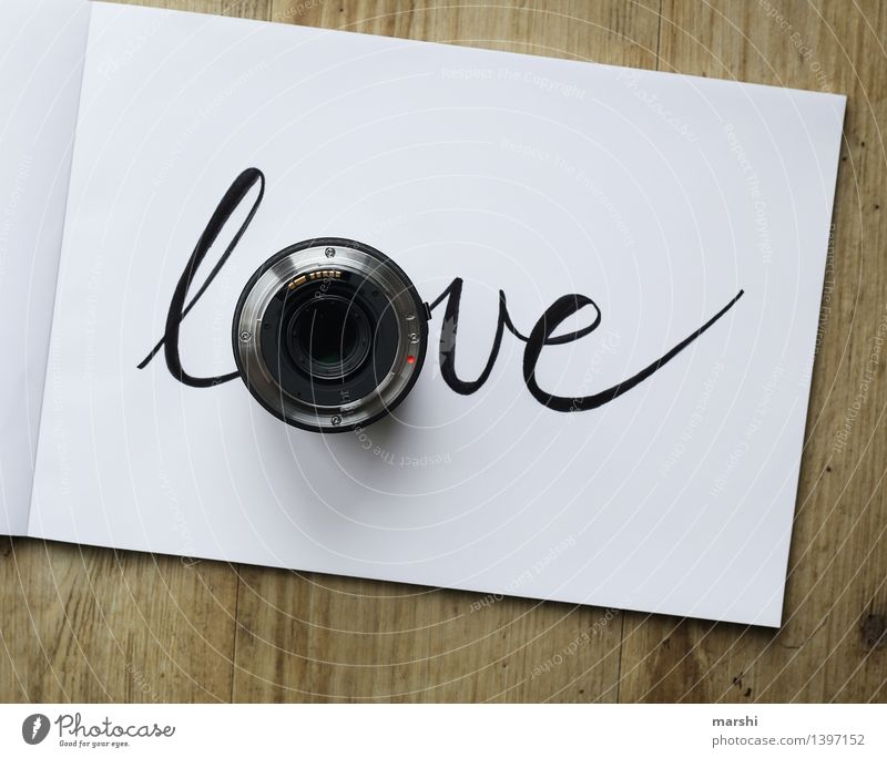Joy Love Emotions Style Art Moody Work and employment Design Contentment Leisure and hobbies Characters Photography Profession Passion Word Workplace