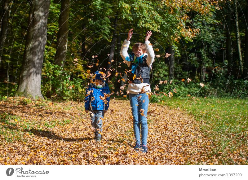Human being Child Leaf Girl Autumn Happy Laughter Infancy Happiness Group of children 8 - 13 years Toddler Autumn leaves Autumnal Throw Brother