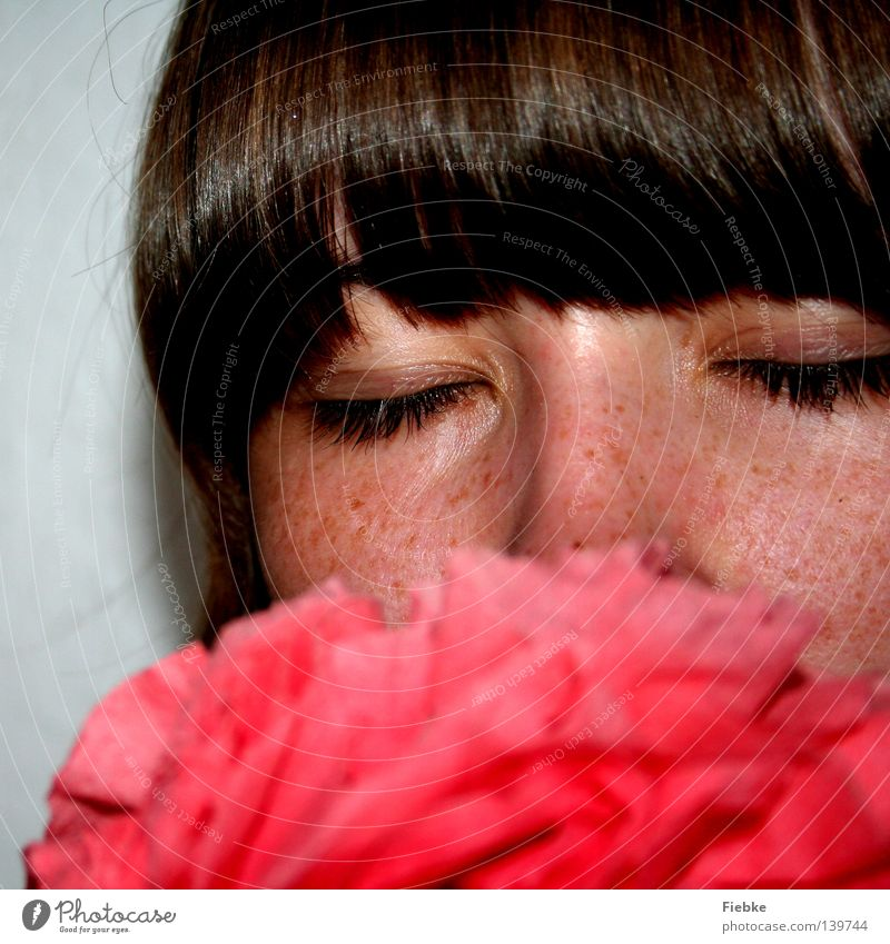paper flower Flower Paper rose Red Human being Youth (Young adults) Woman Feminine Bangs Eyes Closed Nose Eyelash Freckles Hair and hairstyles Brown Face Head