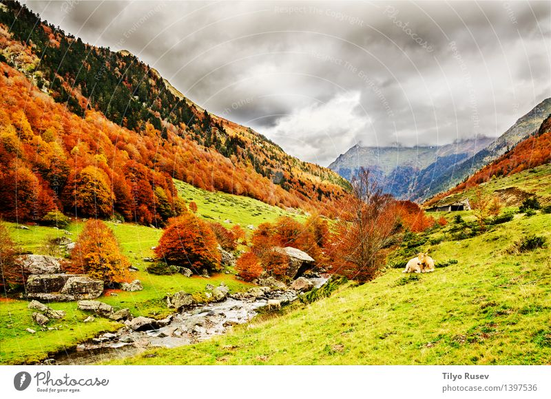 Nature Colour Landscape Mountain Natural Background picture Beauty Photography Horizontal