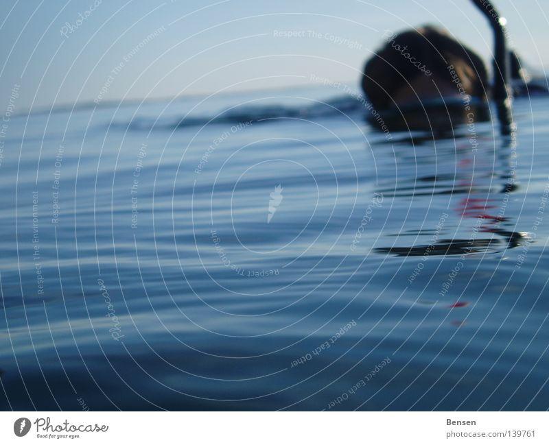 Water Ocean Blue Summer Waves Dive Baltic Sea Rügen Snorkeling Hiddensee