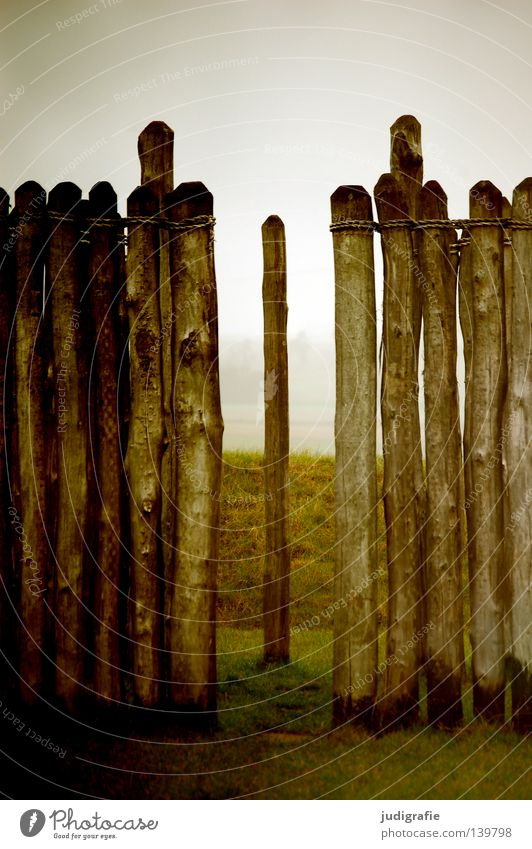 solstice Wood Wall (barrier) Fence Break Fog Manmade structures Observatory Winter solstice Seasons Meadow Landmark Monument Colour Tree trunk Pole Nature