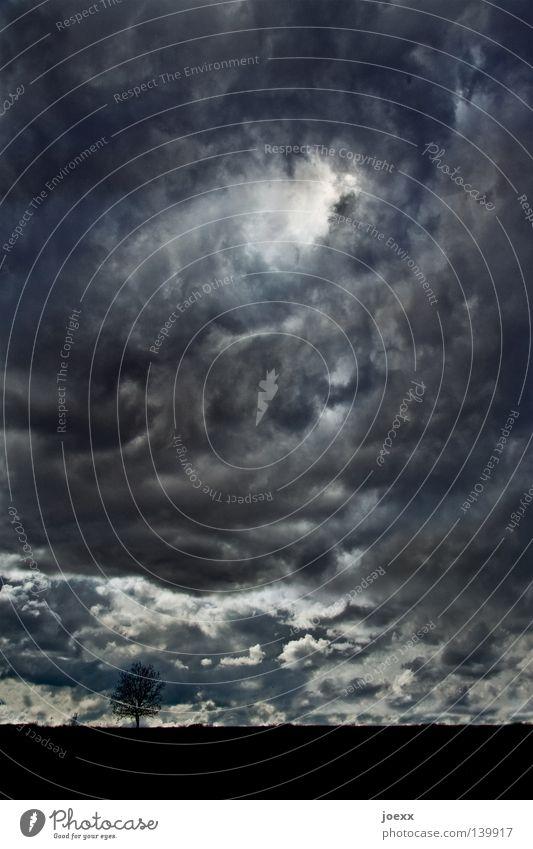 Sky Nature Blue White Tree Clouds Black Landscape Dark Religion and faith Dream Horizon Hope Symbols and metaphors Belief Storm