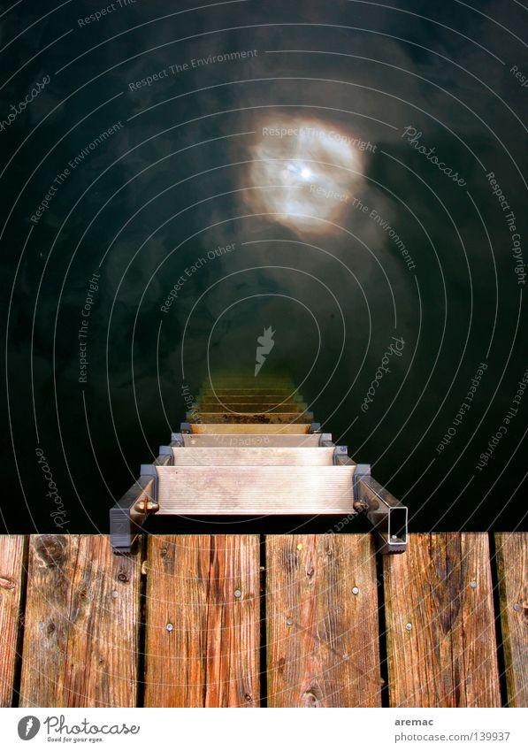 Water Sun Summer Playing Wood Swimming pool Footbridge Jetty Ladder Subsoil Descent Climbing aid