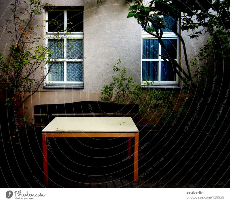Tree Green Calm House (Residential Structure) Dark Window Fear Flat (apartment) Facade Table Bushes Peace Living or residing Mysterious Backyard Tenant