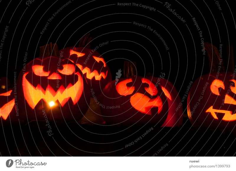 Creep gang 2 Food Pumpkin Living or residing Party Hallowe'en All Saints' Day Art Sculpture Fire Autumn Illuminate Threat Dark Creepy Funny Round Orange Black 6