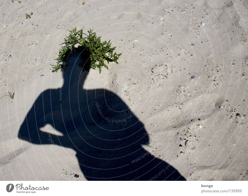 Man Ocean Plant Beach Vacation & Travel Head Hair and hairstyles Head Sand Coast Hat Crown Shadow play Sandy beach