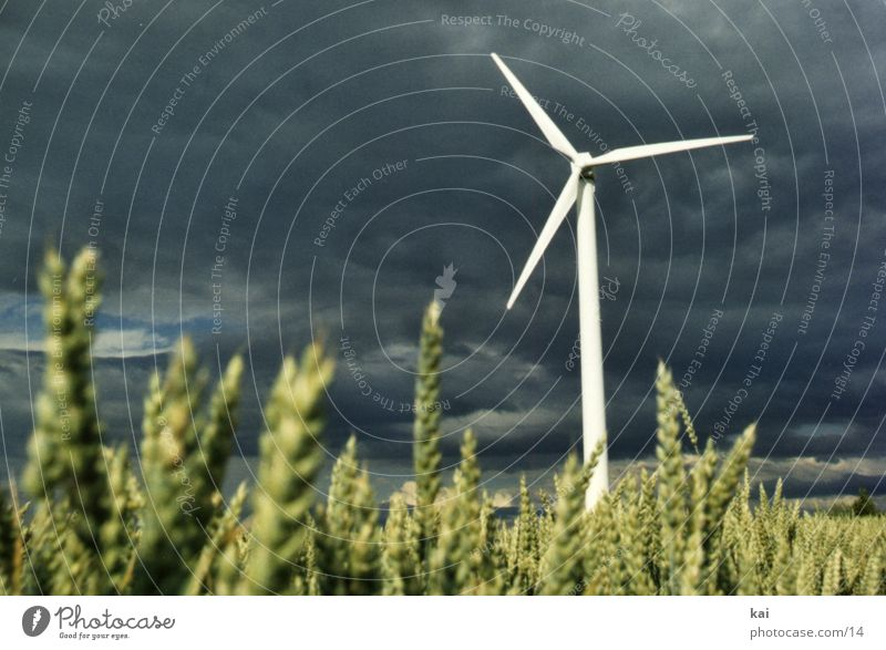 Clouds Field Grain Wind energy plant Agriculture Ear of corn Grain field